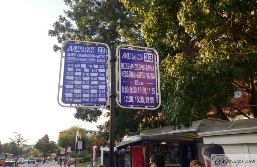 Photo of Bus timetable: Nessebar and Sunny Beach