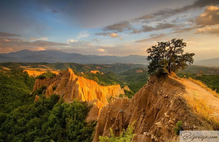 Photo of The nature of Bulgaria: rivers, lakes, waterfalls, national parks. Flora and fauna of the country
