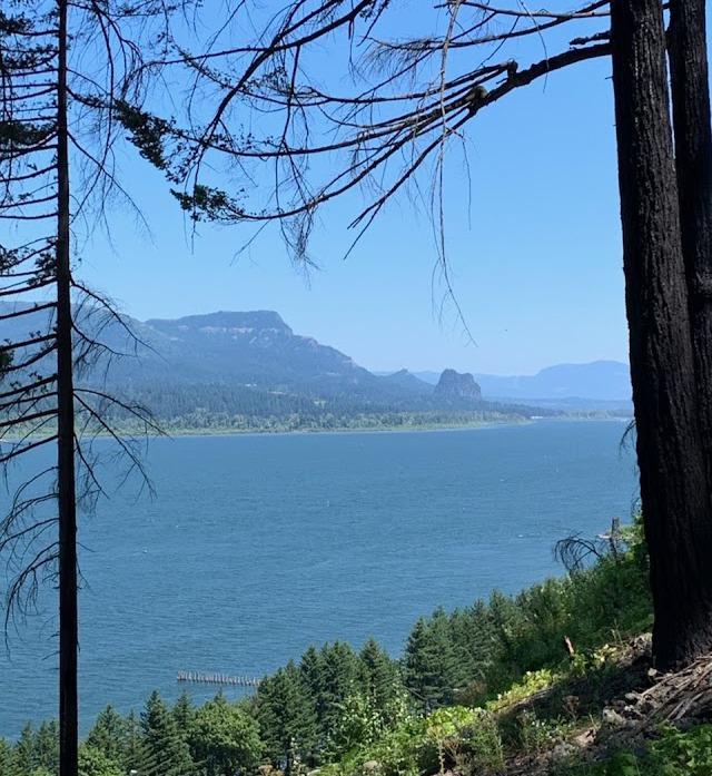 Mt Hood Columbia River
